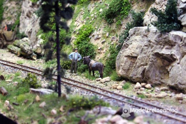 Collectif Chemin de Fer Forestier Mocanita On Traxs 2015